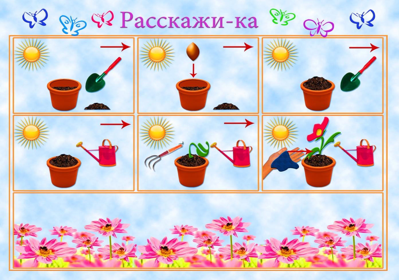 Дидактические Игры По Знакомству С Комнатными Растениями